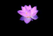 Yogastudio Karuna Logo